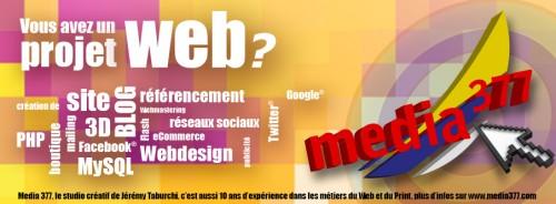 Media 377, le spécialiste du Web